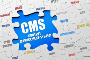 price-per-head-services-preventing-cms-troubles