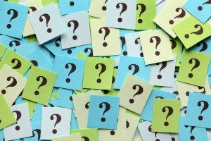 Bookie Price per Head Software: Asking the Right Questions