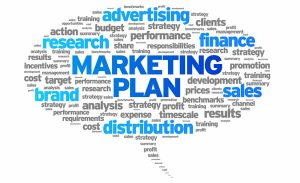 Pay per Head Software: Professional Marketing Plan, Step by Step