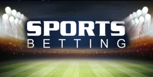 Software for Sports Bets and Pay per Head Services for Players