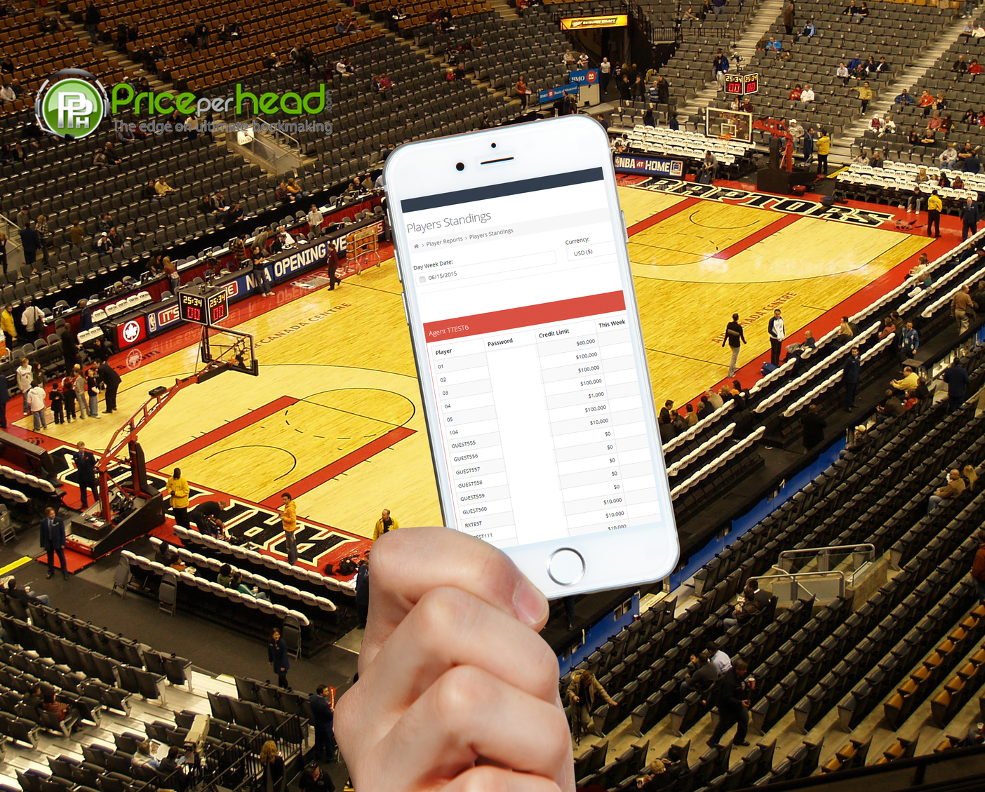 How To Take Sports Bets With Premium Pay Per Head Services